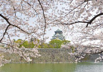 桜と大阪城 大阪の風景
