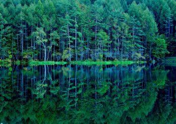 御射鹿池の風景 長野の風景