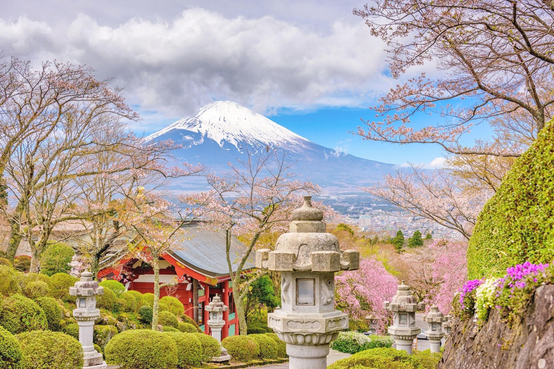 春の御殿場の風景 平和公園と富士山 静岡の風景