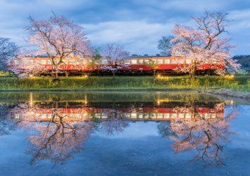 小湊鉄道と桜の風景 千葉の風景
