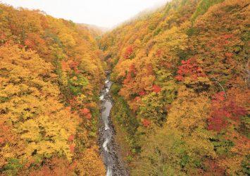 中津川橋から見る秋の中津川渓谷の紅葉 福島の風景