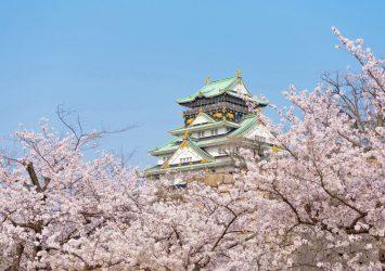 日本の春の風景 桜と大阪城 大阪の風景