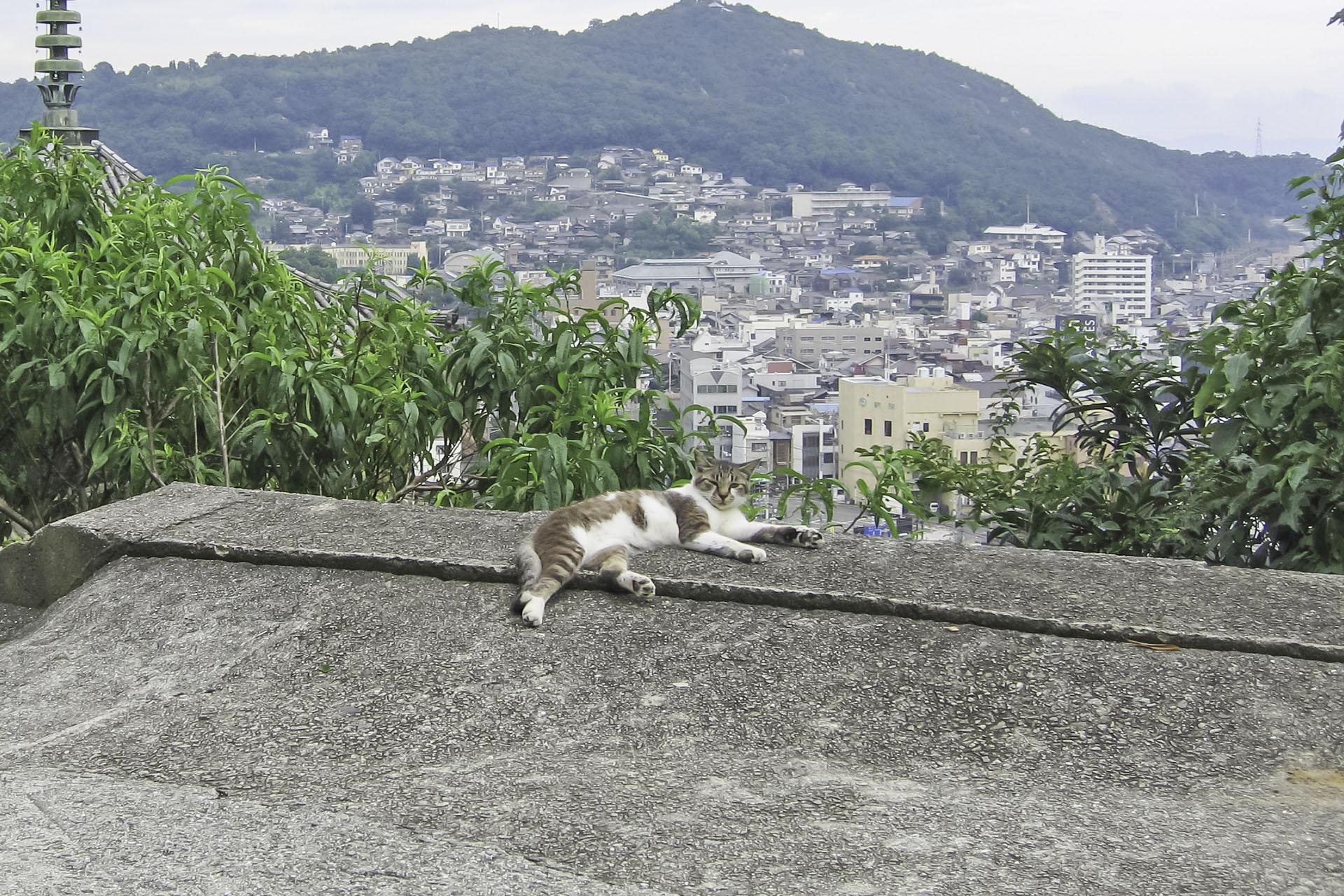 尾道の風景 広島の風景