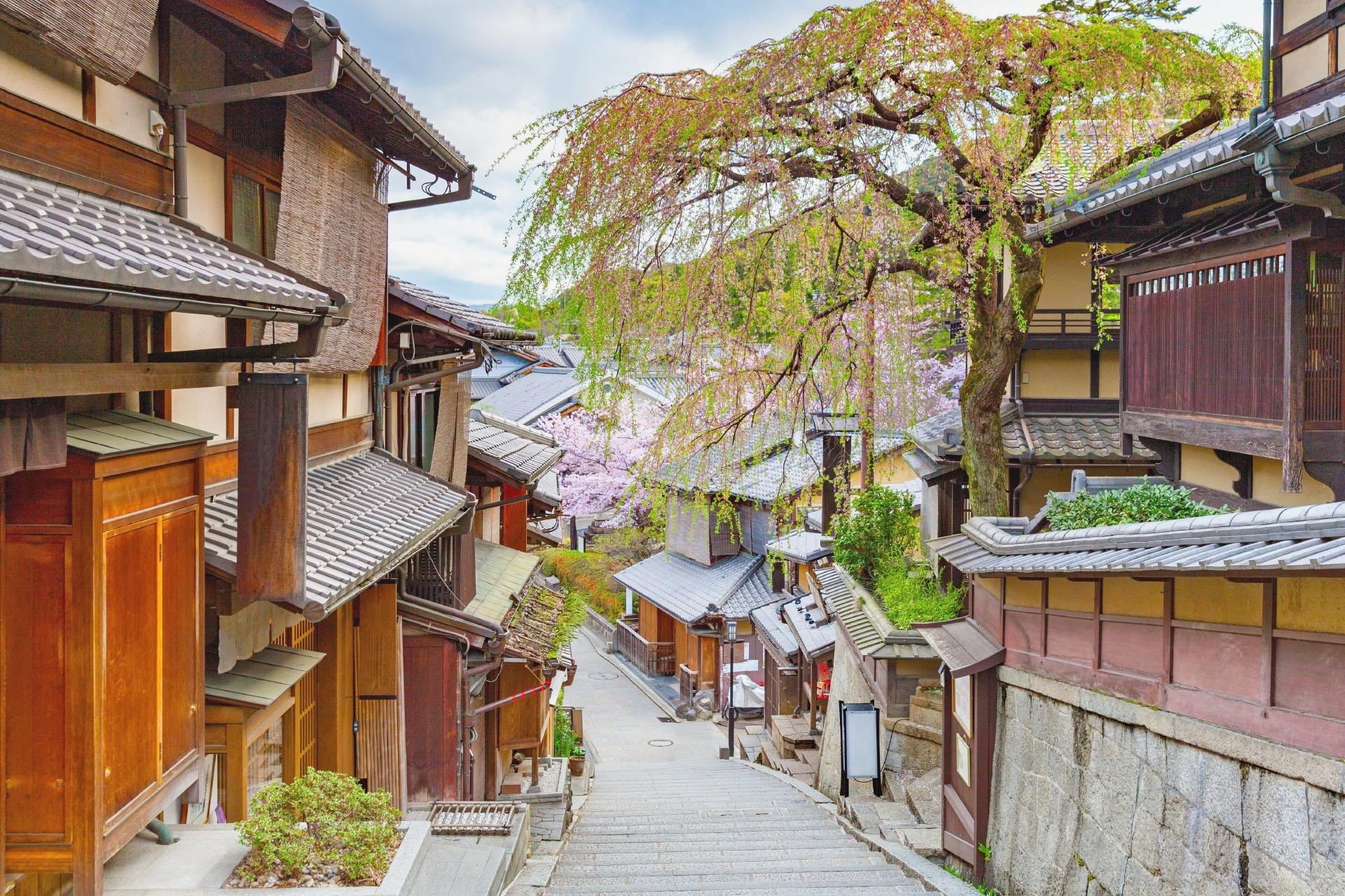 春の京都の町並み 京都の風景