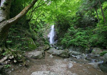 払沢の滝 東京の滝 東京の風景