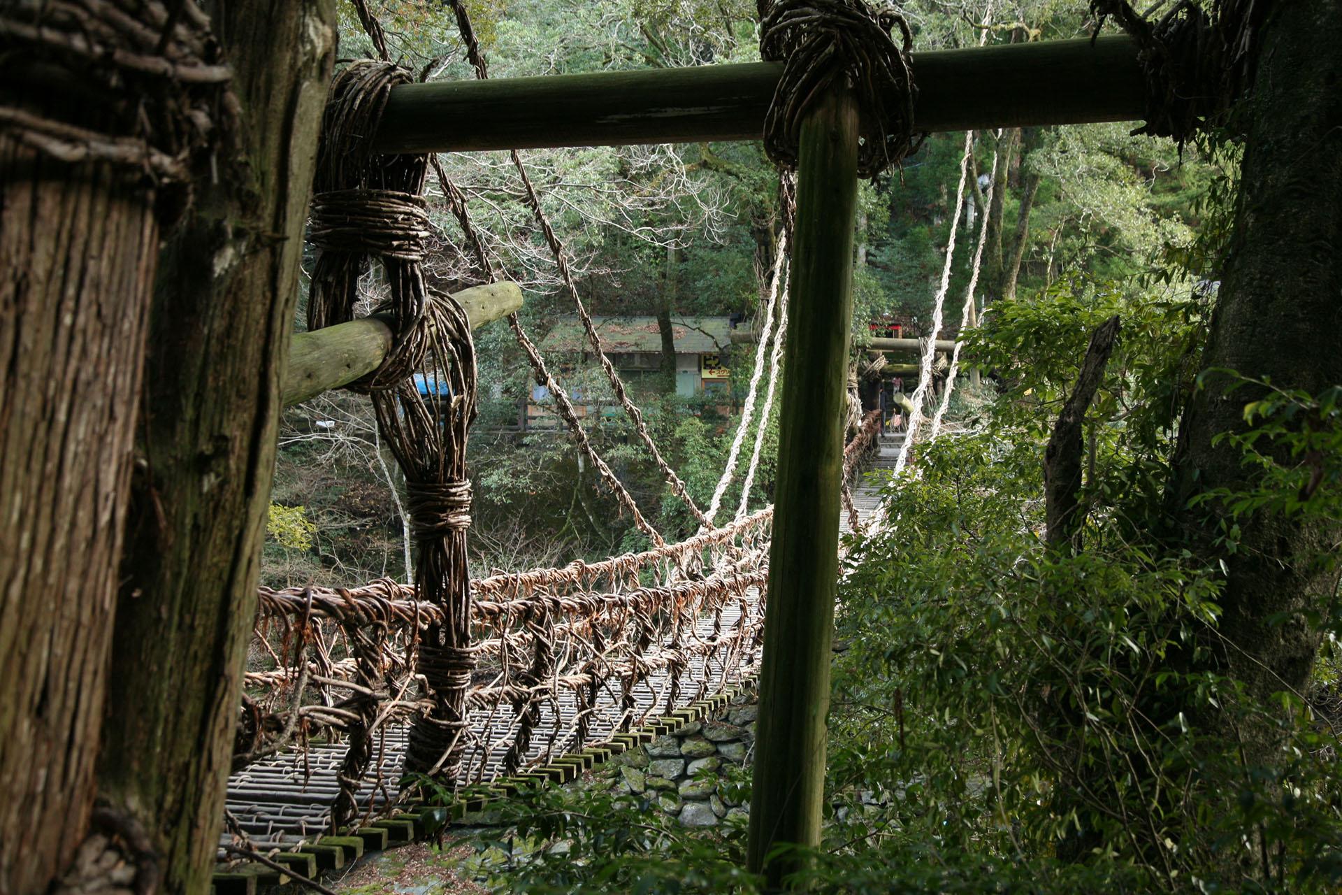 祖谷のかずら橋 徳島の風景
