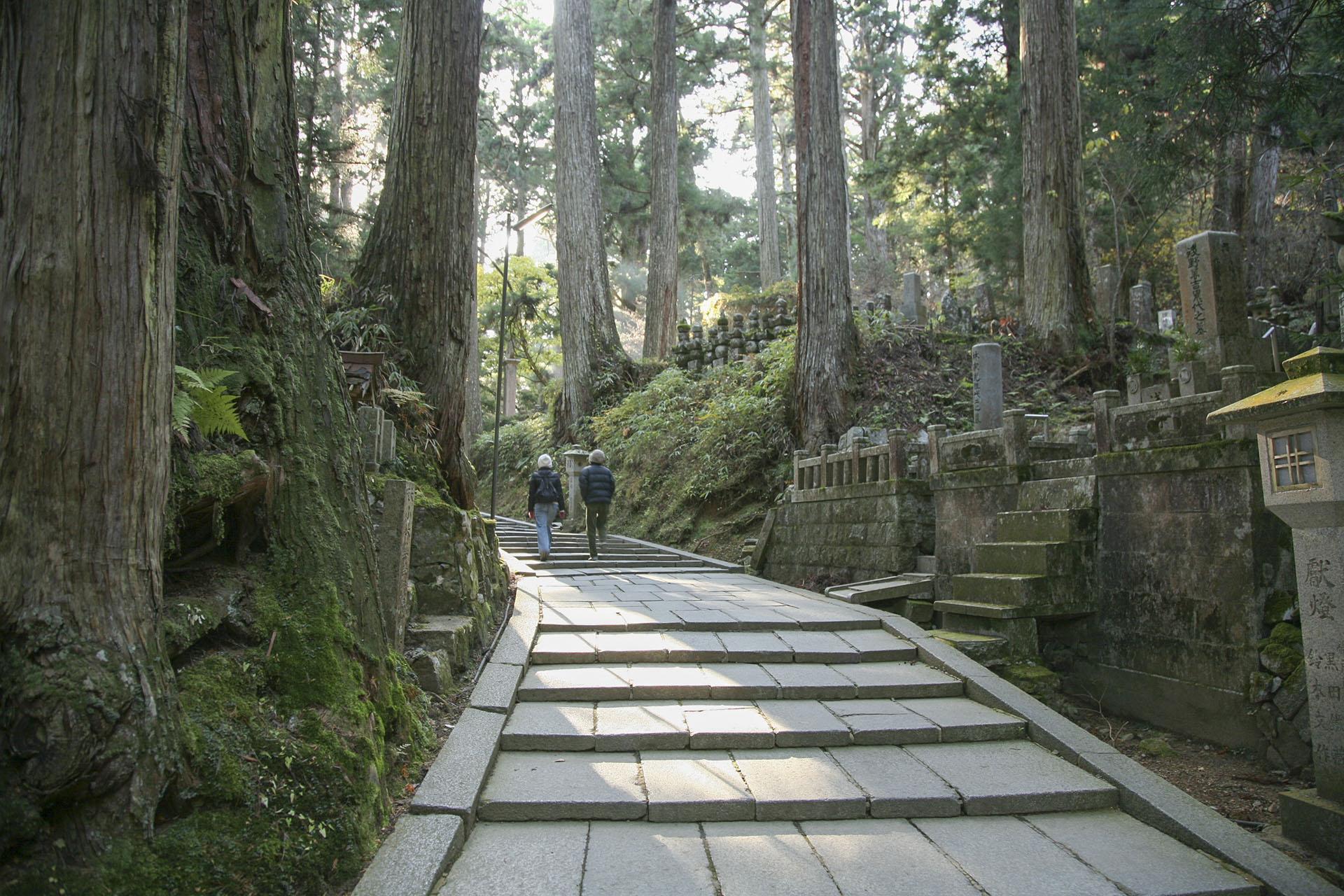 高野山奥の院 和歌山の風景