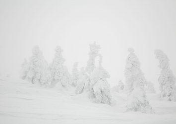 冬の八甲田山の風景 青森の風景