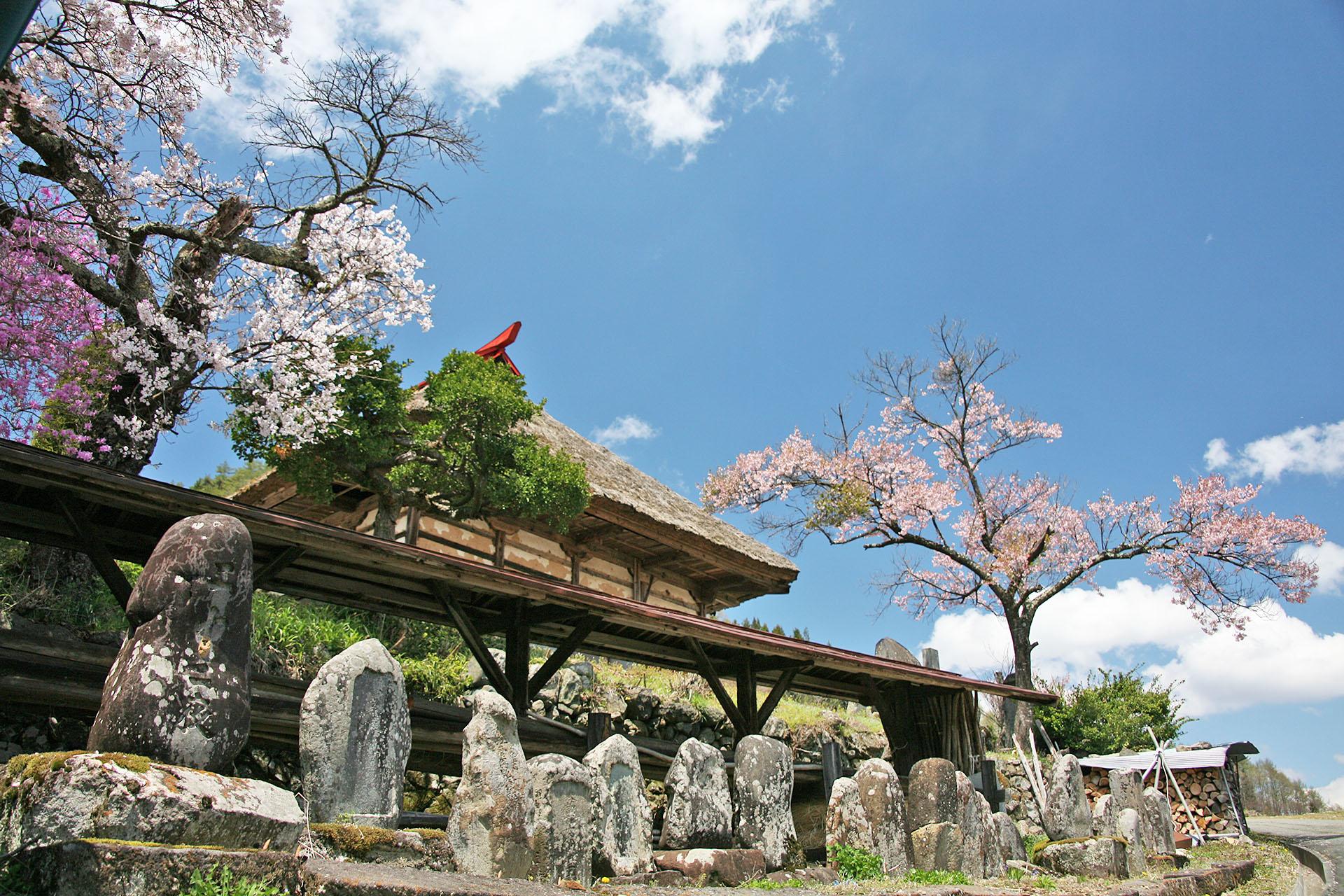 高遠の春の風景 長野の風景