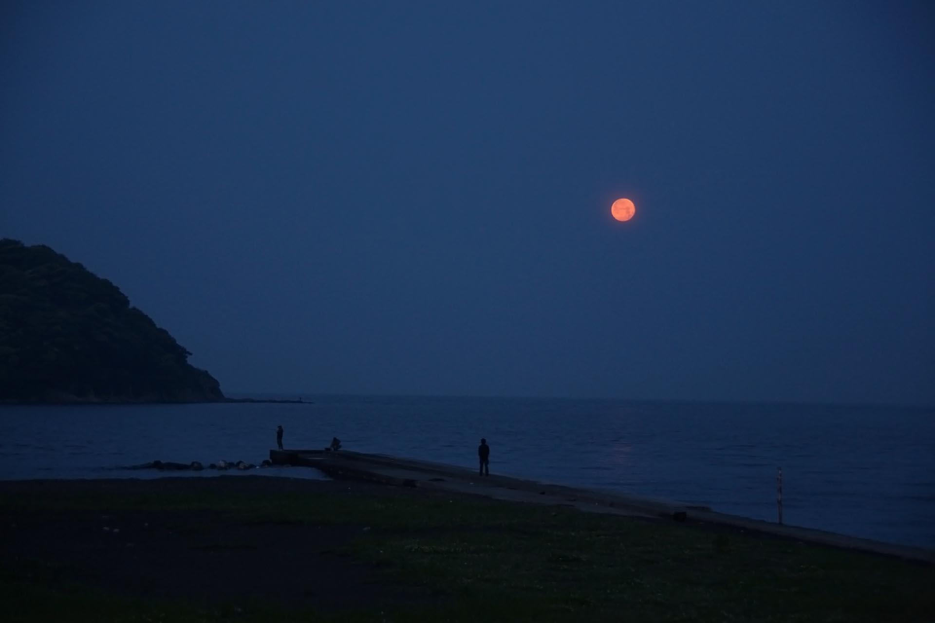 夜の江の島の風景 神奈川の風景