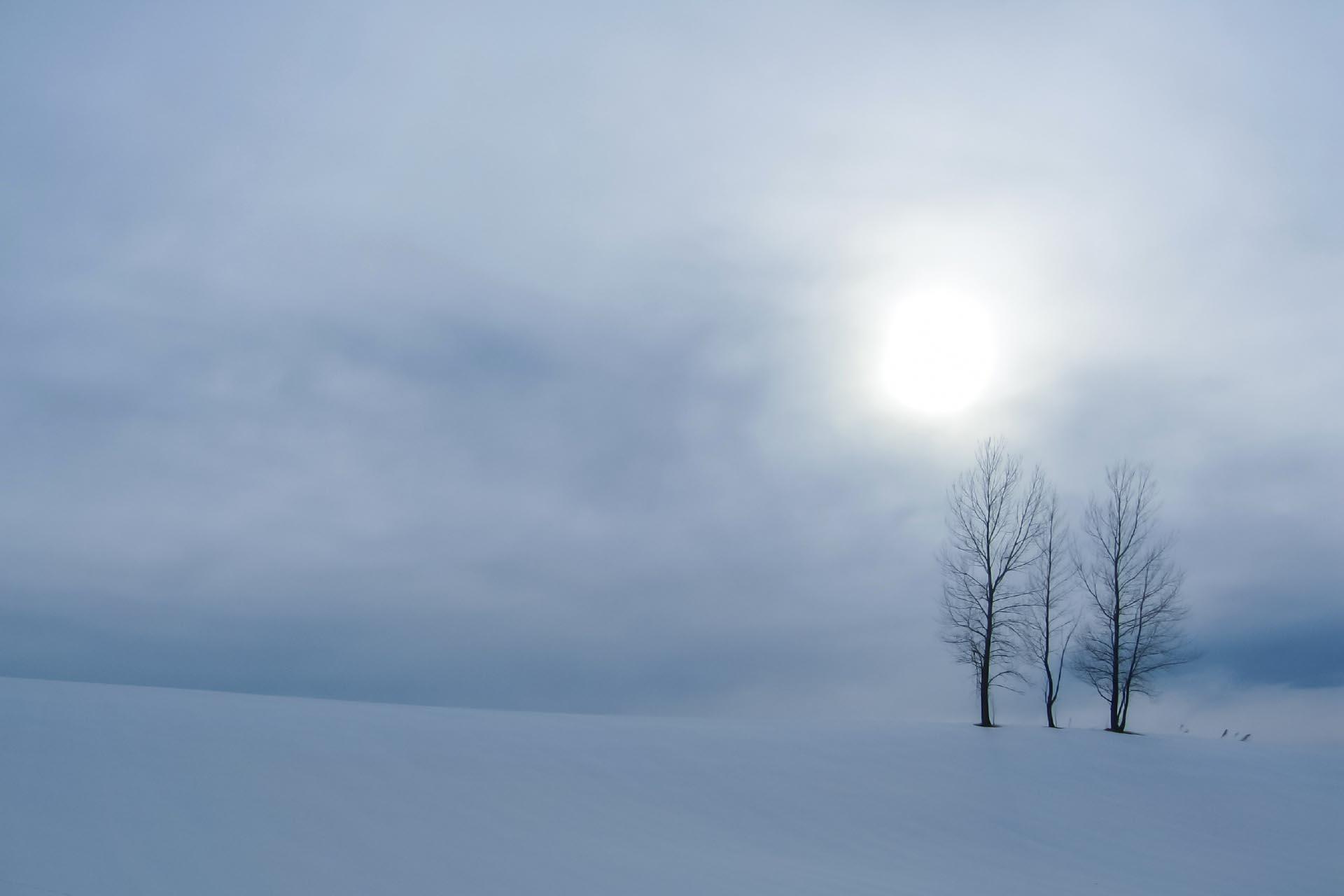 北海道の冬の風景 三月の美瑛
