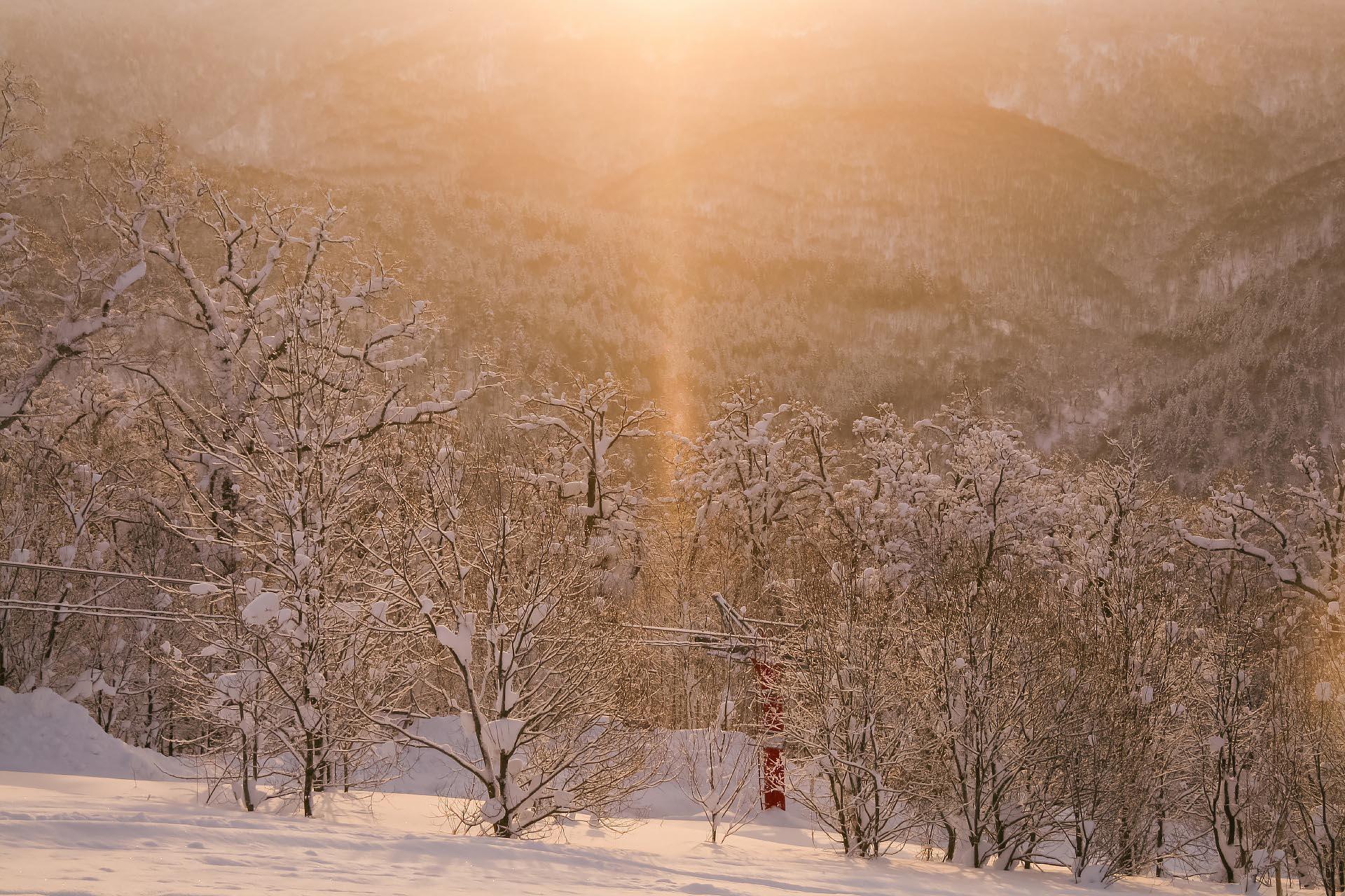 北海道の冬の風景 二月の名寄