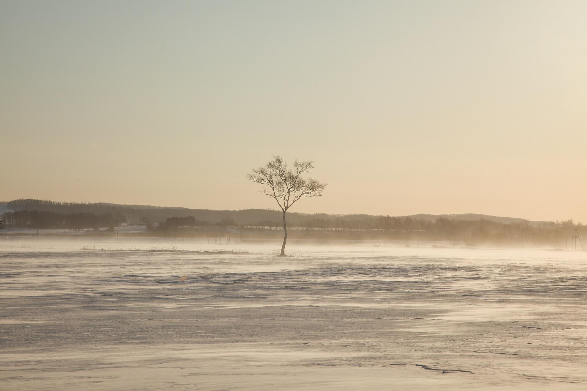 北海道の冬の風景 二月の帯広