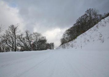 冬の国道394号 青森の風景