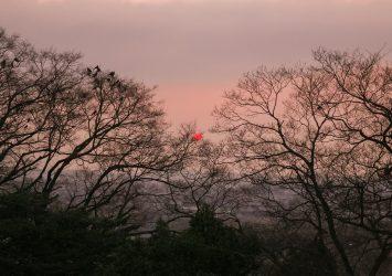 彦根城から見る夕暮れの風景 滋賀の風景