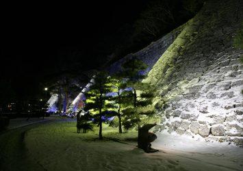 冬の夜の盛岡城 岩手の風景