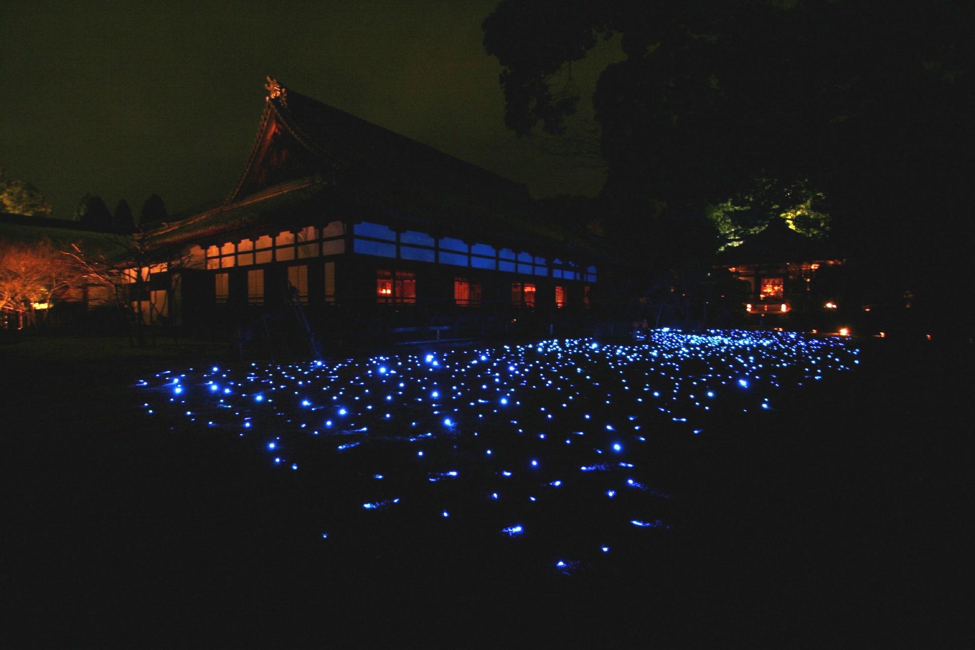 青蓮院門跡 夜の京都の風景