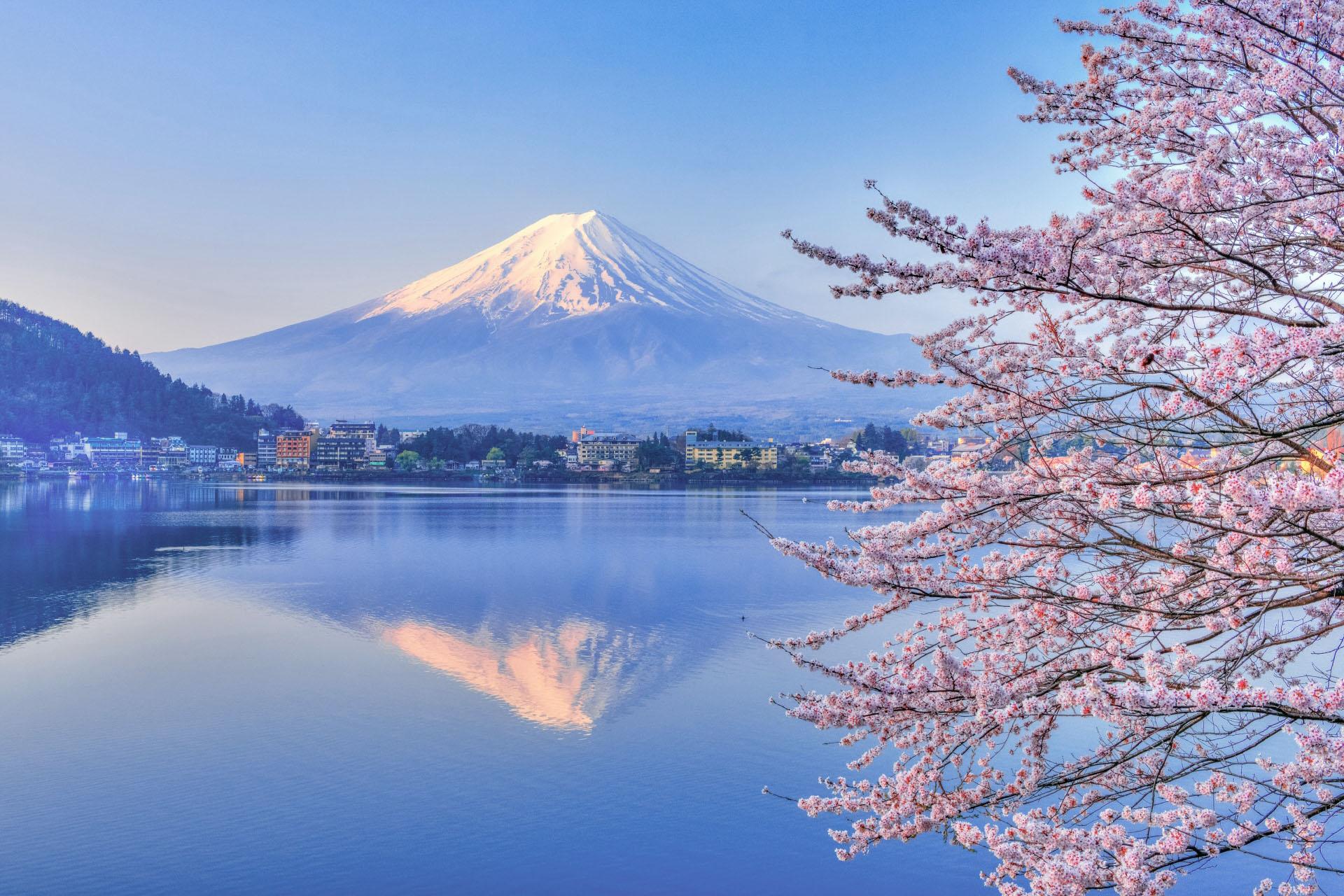 河口湖と桜と富士山 山梨の風景