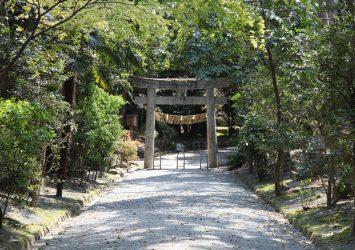 宗像大社の風景 福岡の風景