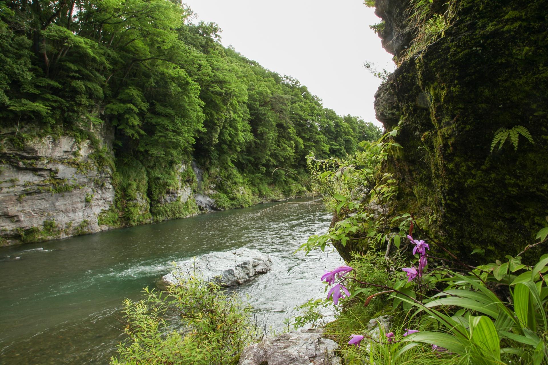 長瀞の風景 埼玉の風景