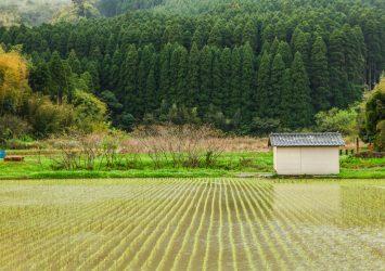 日南の風景 宮崎の風景
