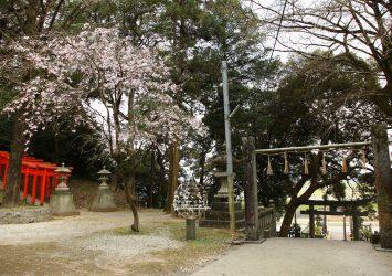 春の若八幡神社 福岡の風景