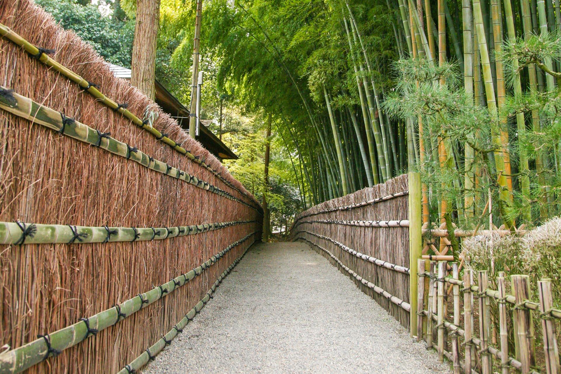 水戸偕楽園の風景 茨城の風景