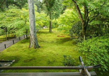 京都 大原三千院の風景 京都の風景
