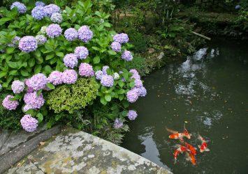 明星院 福江島の風景 長崎の風景