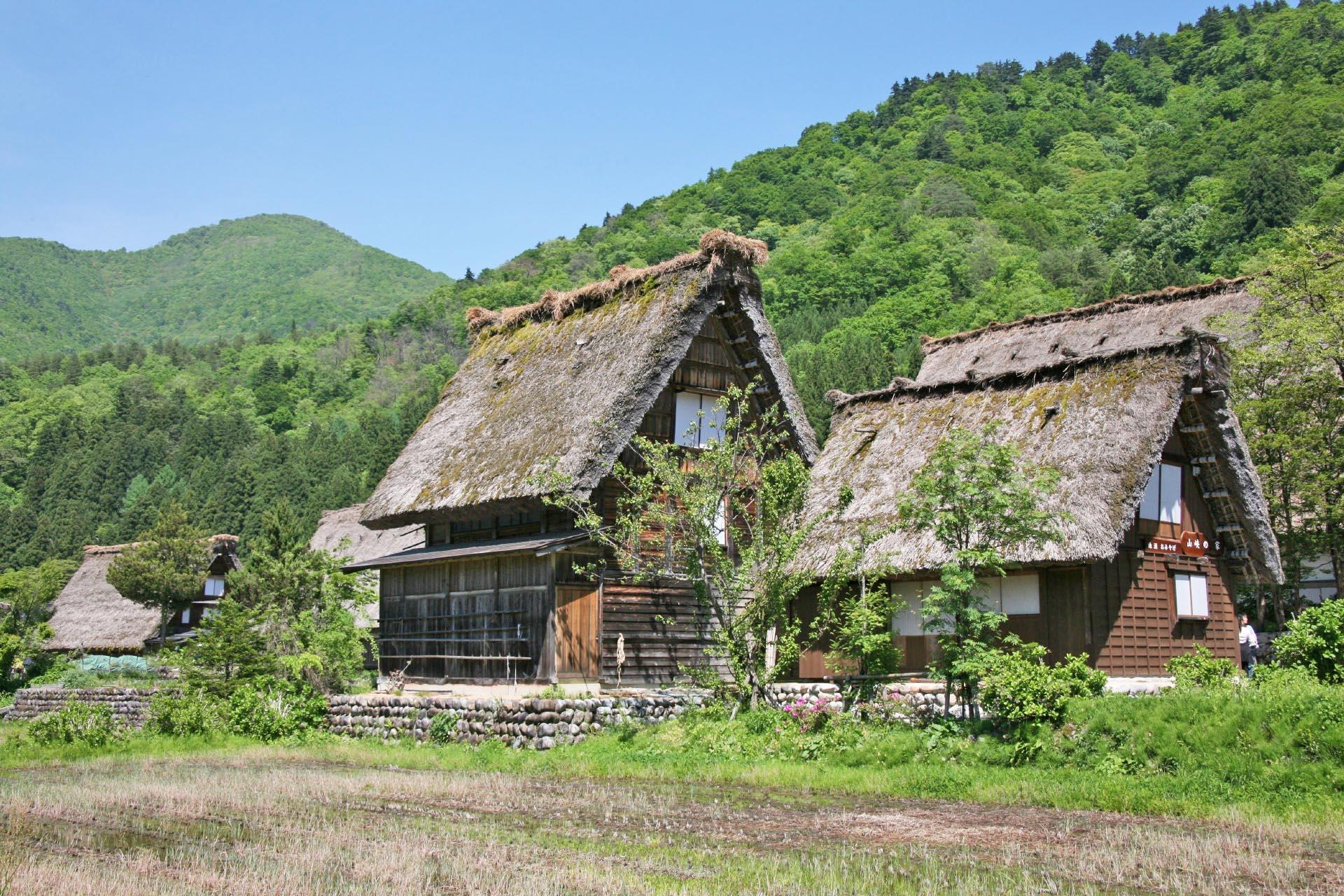 初夏の白川郷 岐阜の風景