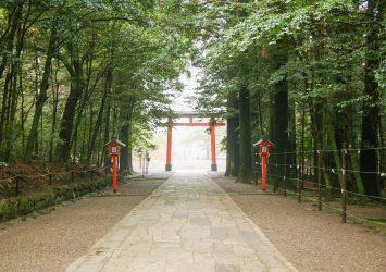 霧島神宮 鹿児島の風景