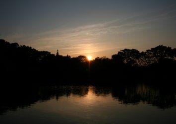 夕暮れ時の善福寺公園 東京の風景