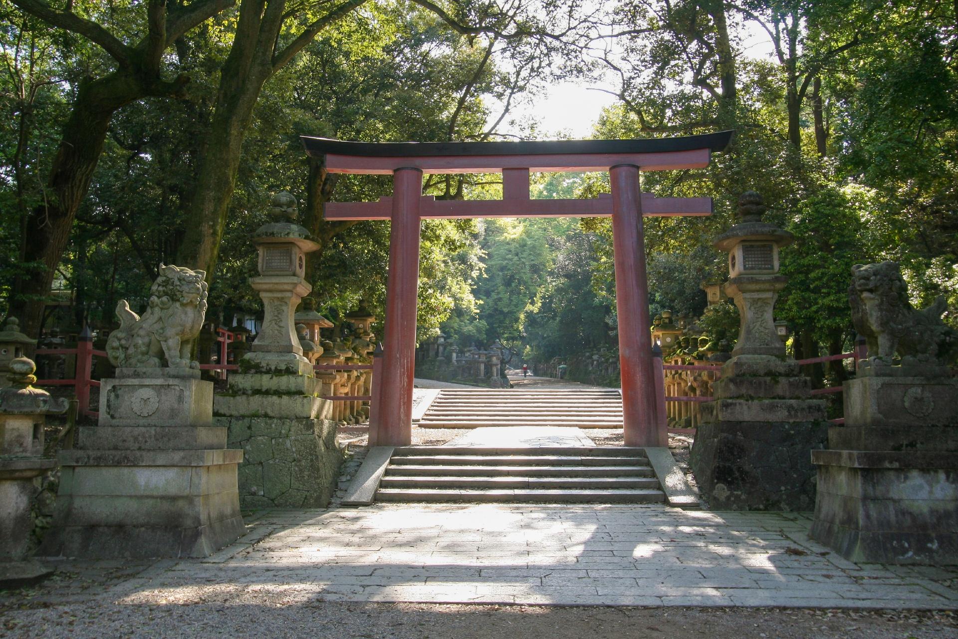 朝の春日大社 奈良の風景
