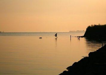 朝の宍道湖 島根の風景