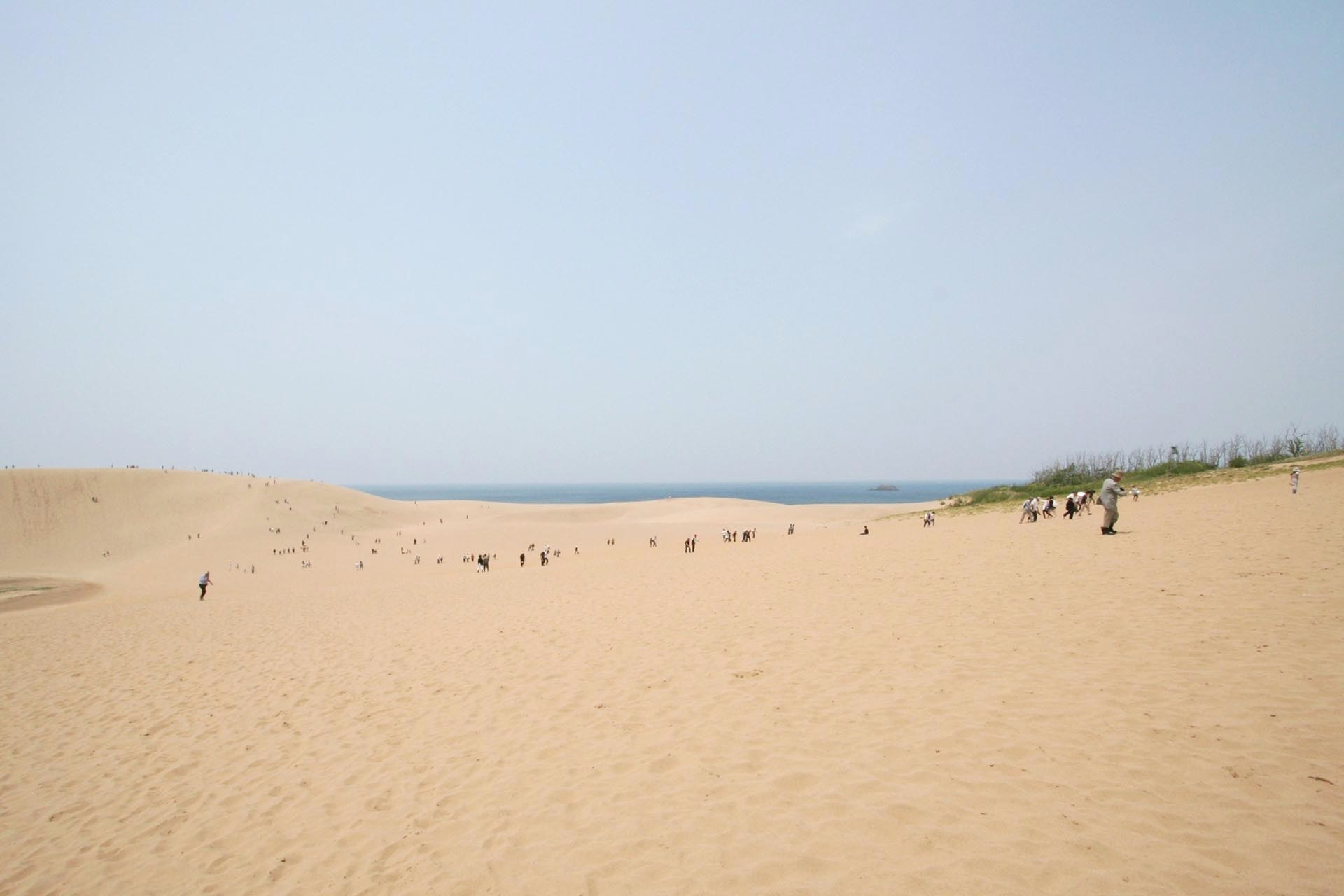 鳥取砂丘 鳥取の風景