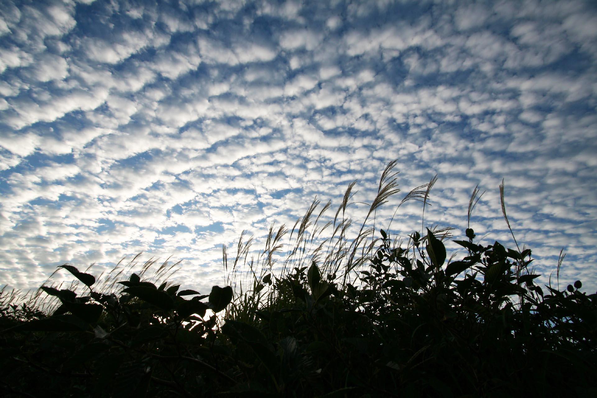 秋の朝の空 熊本の風景