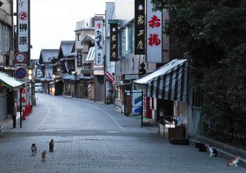 伊勢神宮前 朝のおはらい町通り 三重の風景