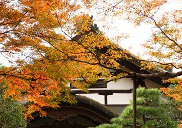 秋の金峯山寺 秋の吉野の風景 奈良の風景