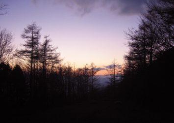 夕暮れの鷹ノ巣山 東京の風景