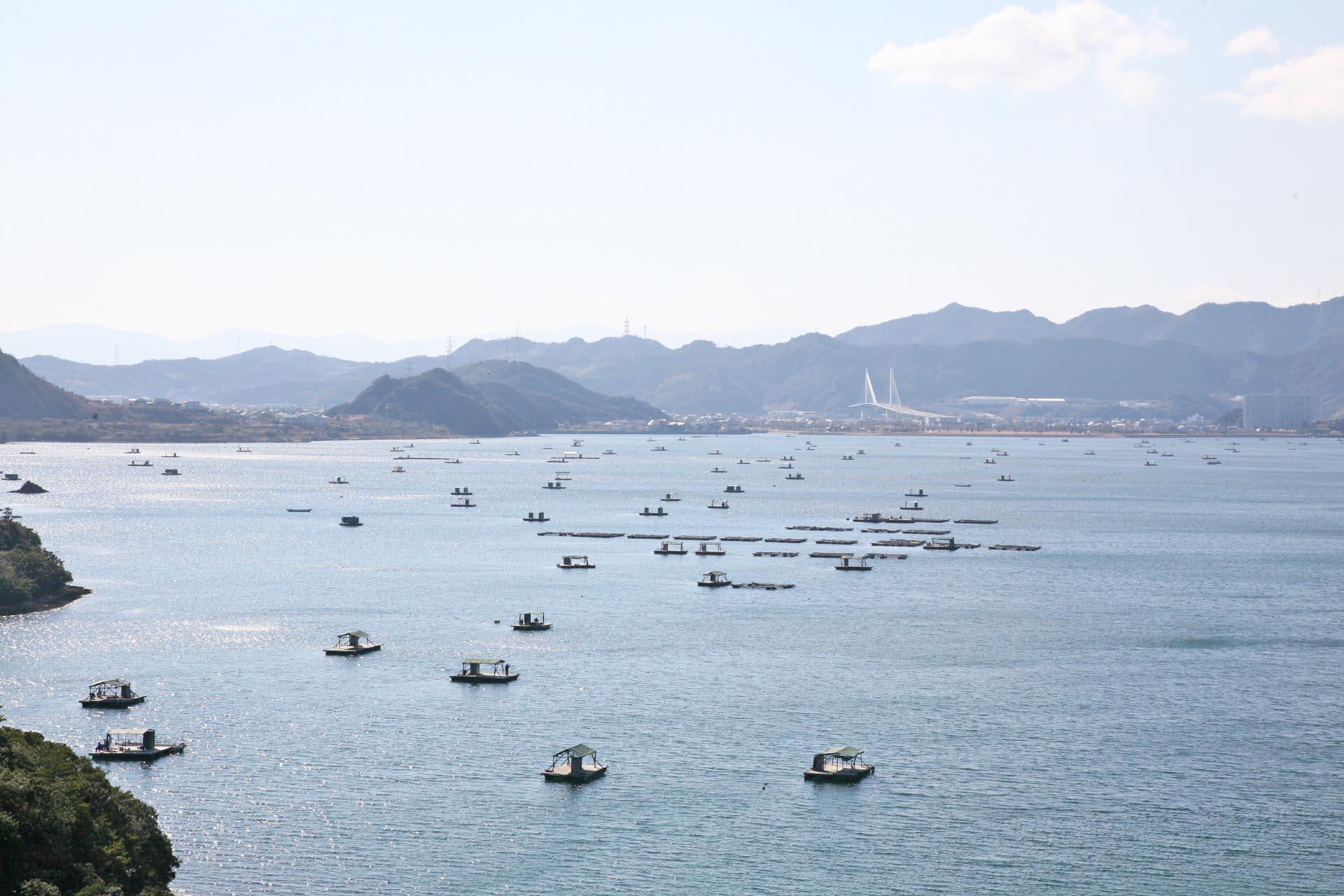 正月の瀬戸内海の風景 徳島の風景