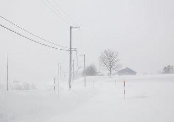 地吹雪の風景 ニセコ町 冬の北海道の風景