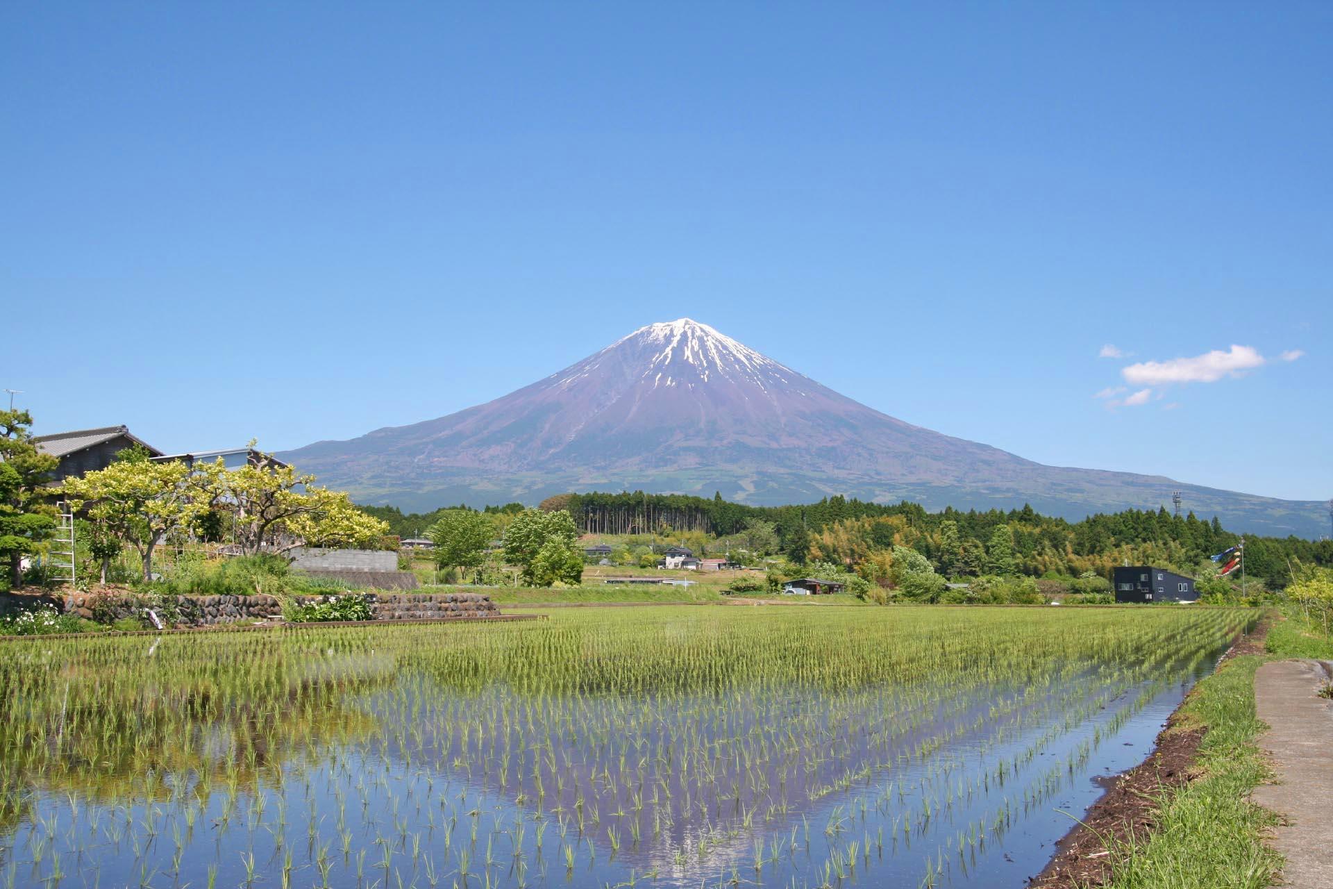 富士山のある風景 静岡の風景