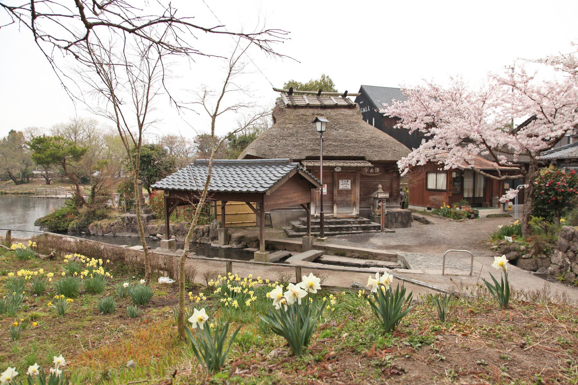 春の湯布院 大分の風景