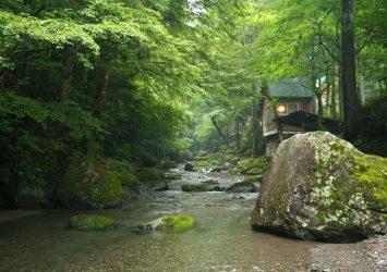 奥多摩の風景 東京の風景