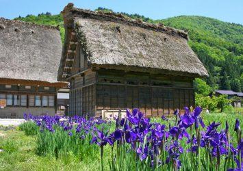 五月の白川郷の風景 岐阜の風景