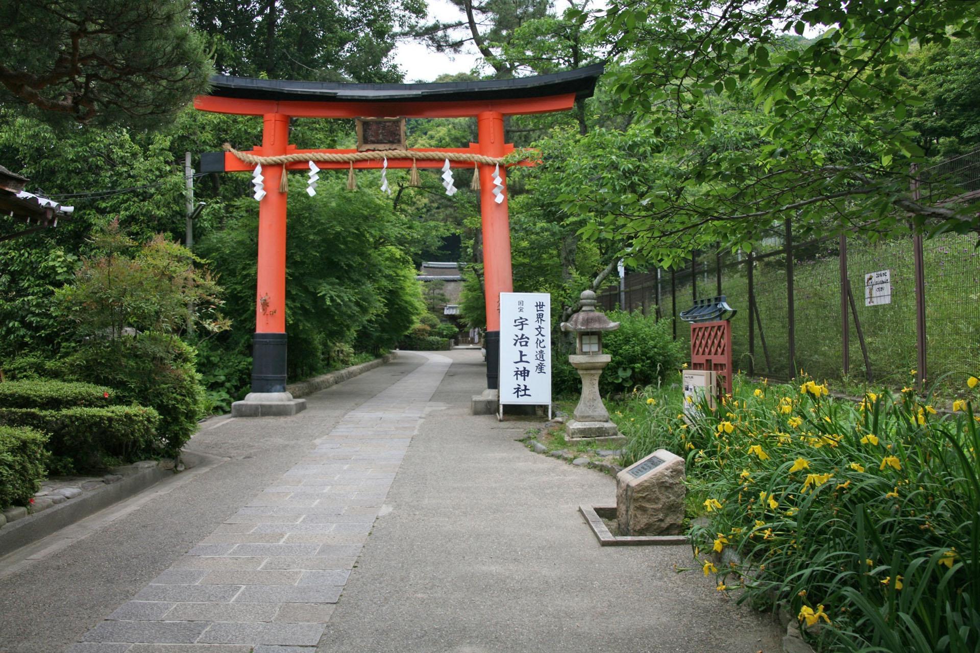 五月の京都 宇治上神社 京都の風景