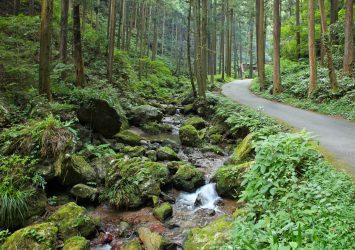 黒山三滝への道 埼玉の風景