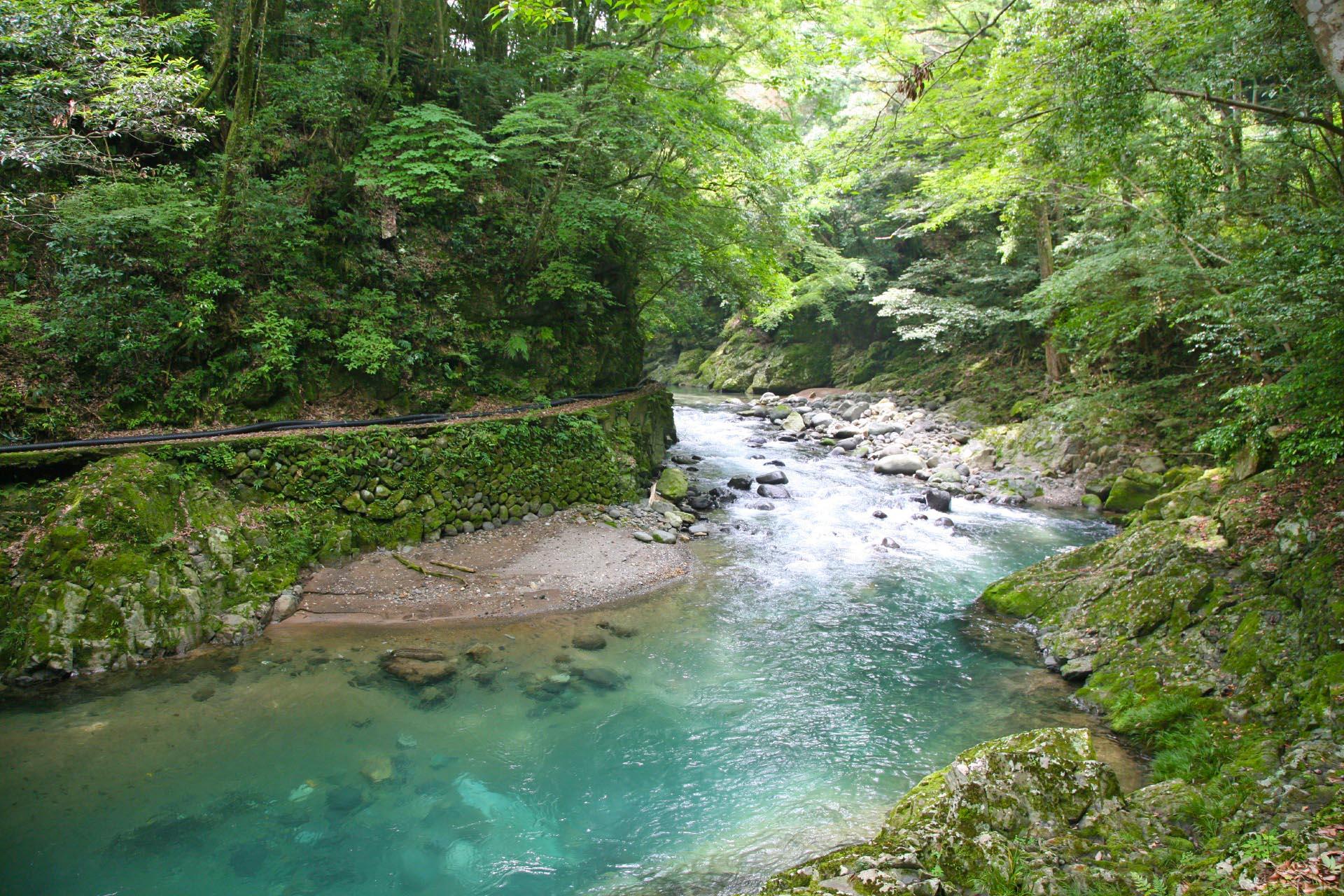 夏の世古峡 静岡の風景