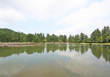 夏の毛越寺の庭園の風景 岩手の風景