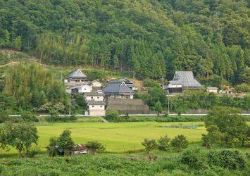 夏の里山の風景 兵庫の風景